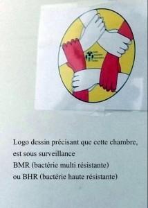 logo bhr_bmr